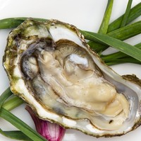 FDA is Investigating Norovirus Outbreak Linked to Oysters